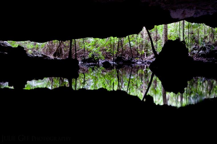 Private Cenote II